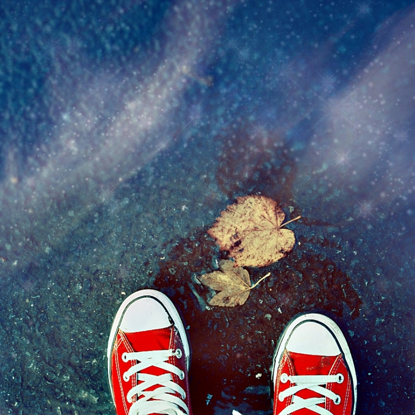 sneaker reflection